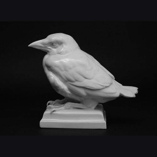 Young Raven- Schwarzburger ( Wilhelm Neuhaeuser )