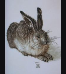 Rosenthal Painted Rabbit ( Hase )- Albrecht Duerer # 1103