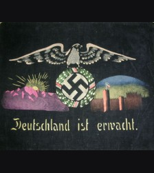 Deutschland Erwacht Political Pillow Sham # 1131
